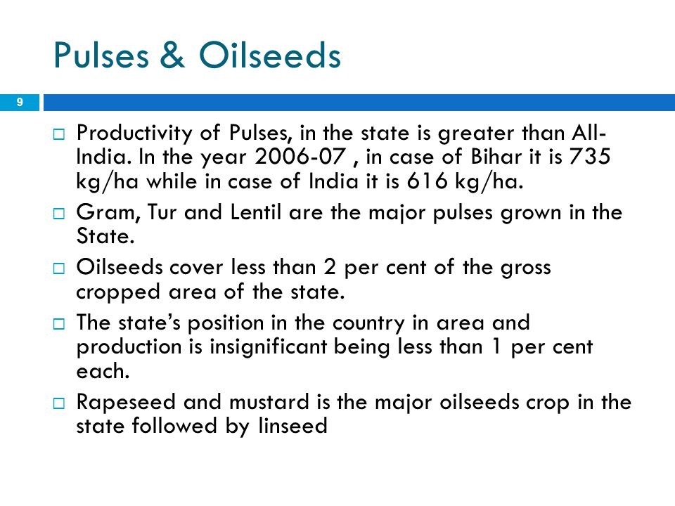 Pulses & Oilseeds