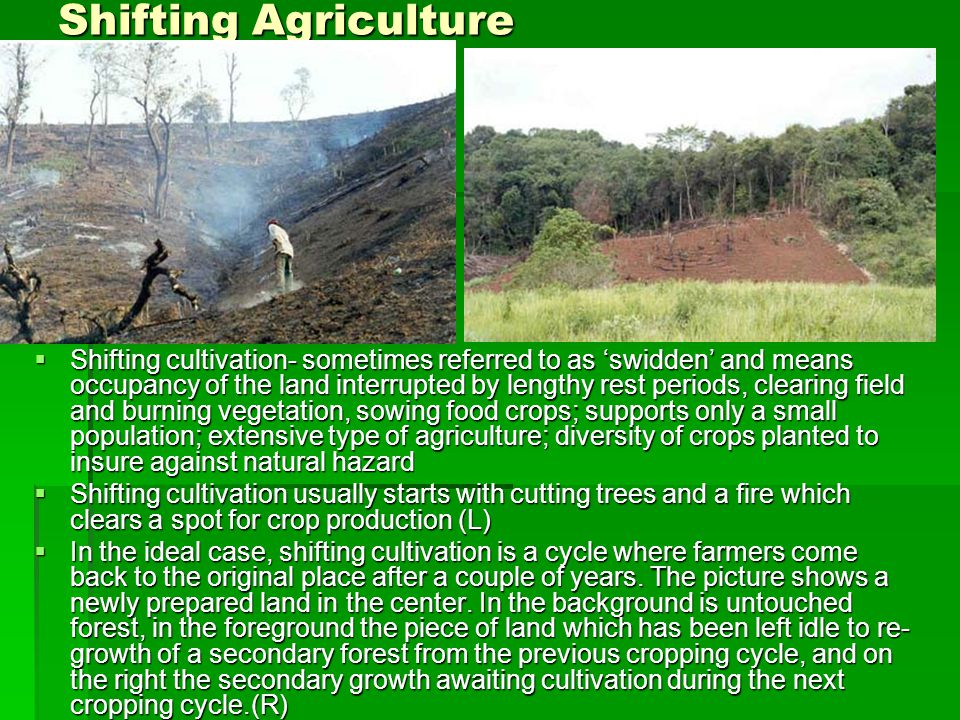 Shifting Agriculture