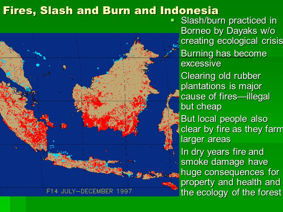 Fires, Slash and Burn and Indonesia