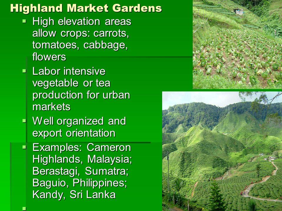 Highland Market Gardens