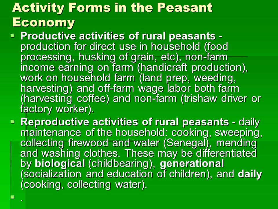 Activity Forms in the Peasant Economy