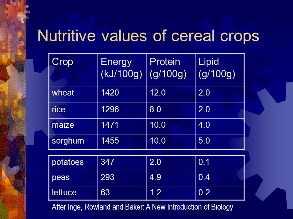 Nutritive values of cereal crops