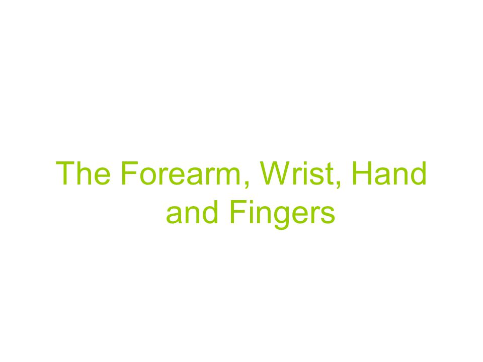 The Forearm, Wrist, Hand and Fingers
