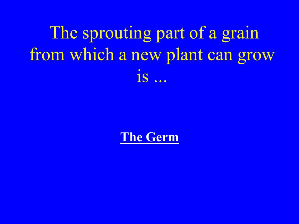 The sprouting part of a grain from which a new plant can grow is ...