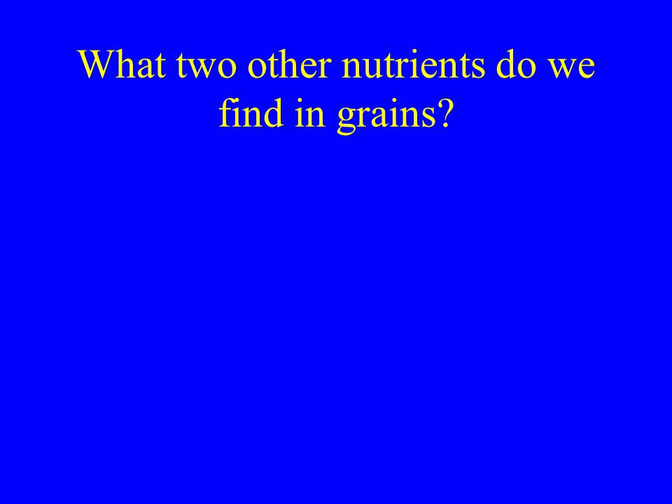 What two other nutrients do we find in grains