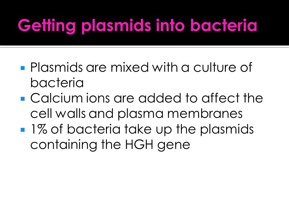 Getting plasmids into bacteria