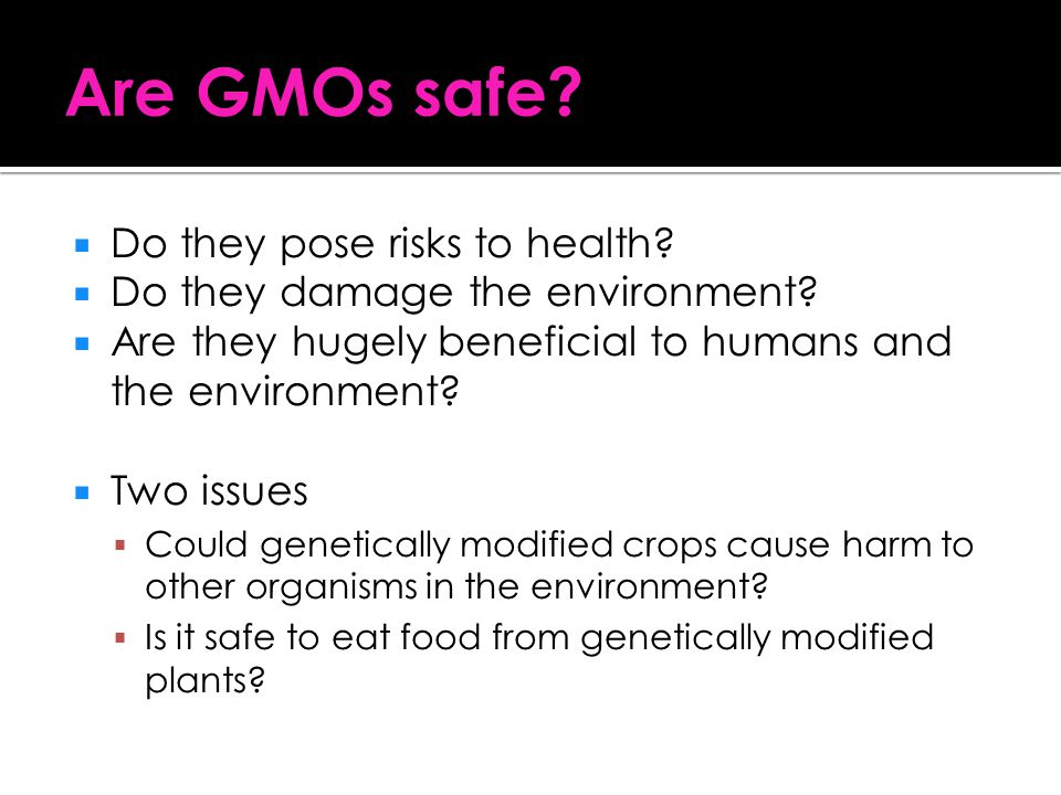 Are GMOs safe Do they pose risks to health