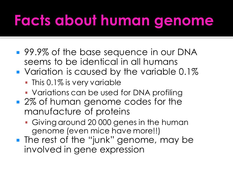 Facts about human genome
