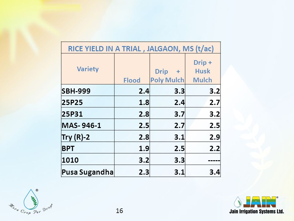 RICE YIELD IN A TRIAL , JALGAON, MS (t/ac)