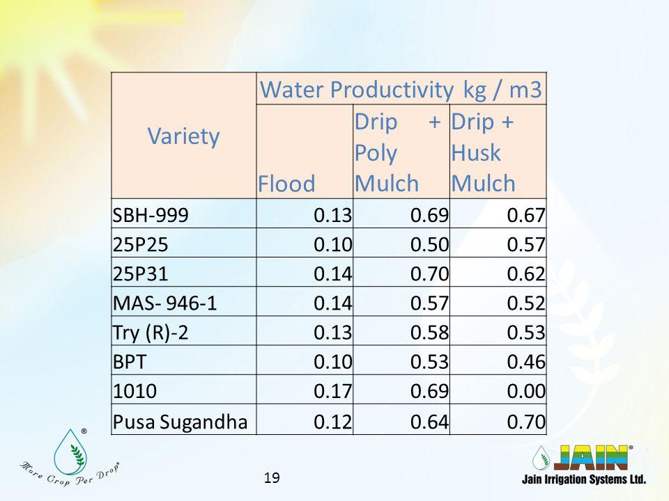 Water Productivity kg / m3