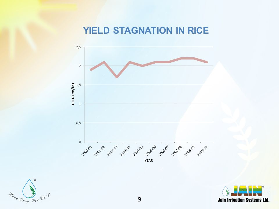 YIELD STAGNATION IN RICE