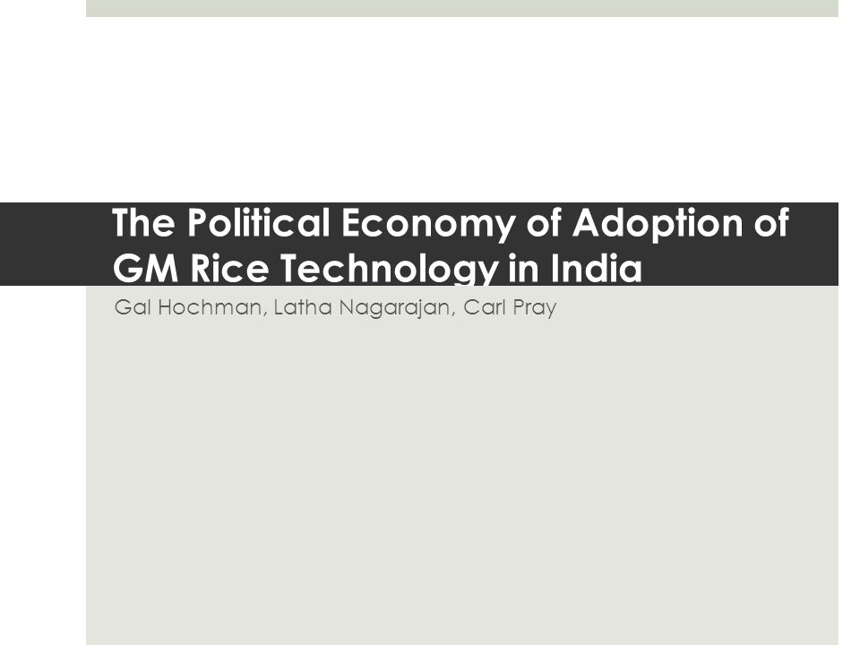 The Political Economy of Adoption of GM Rice Technology in India