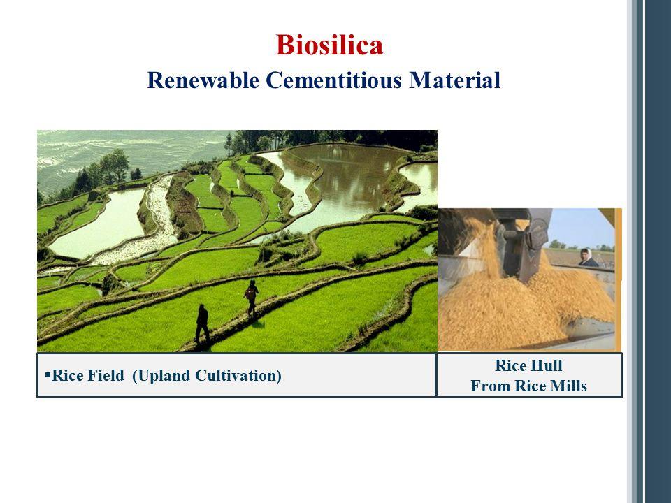 Biosilica Renewable Cementitious Material Rice Hull