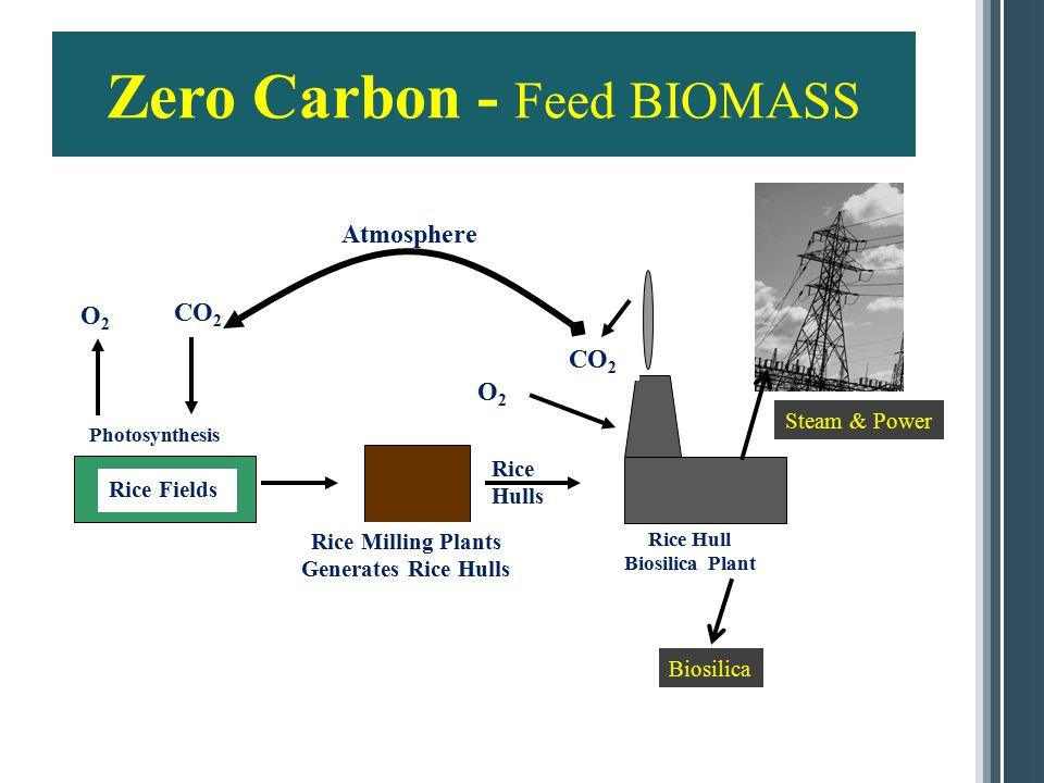 Zero Carbon - Feed BIOMASS