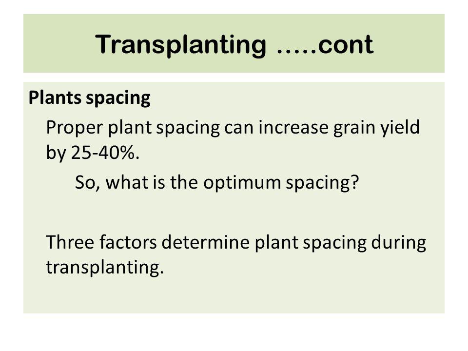 Transplanting …..cont