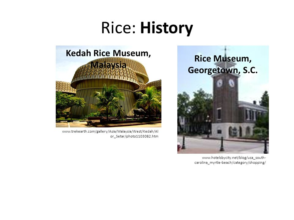Kedah Rice Museum, Malaysia Rice Museum, Georgetown, S.C.