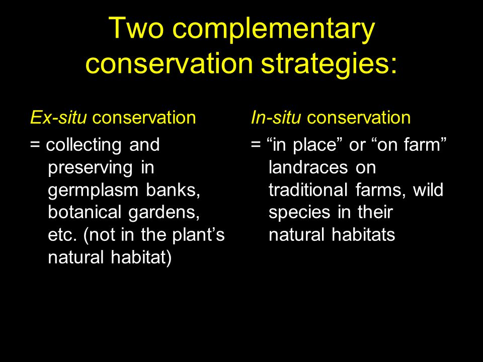 Two complementary conservation strategies: