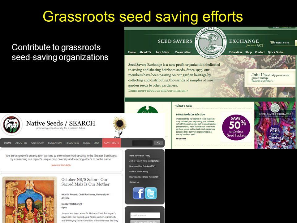 Grassroots seed saving efforts