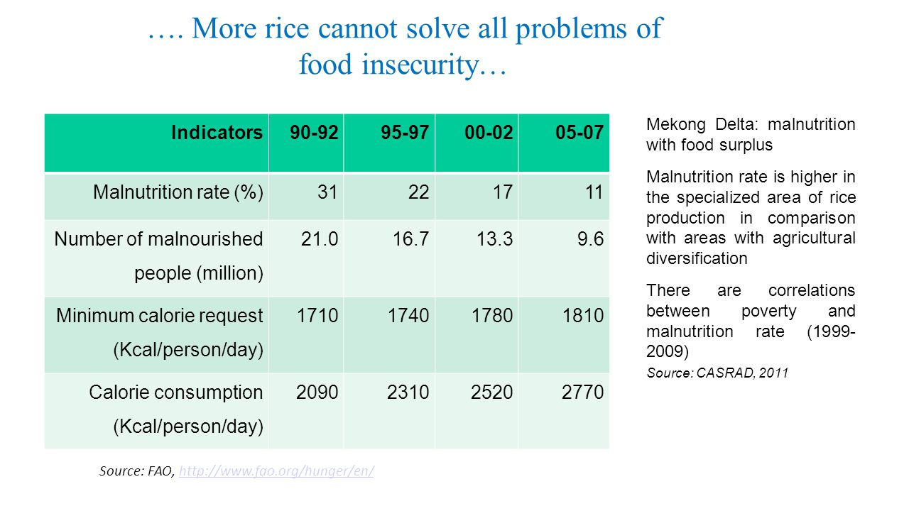 …. More rice cannot solve all problems of food insecurity…