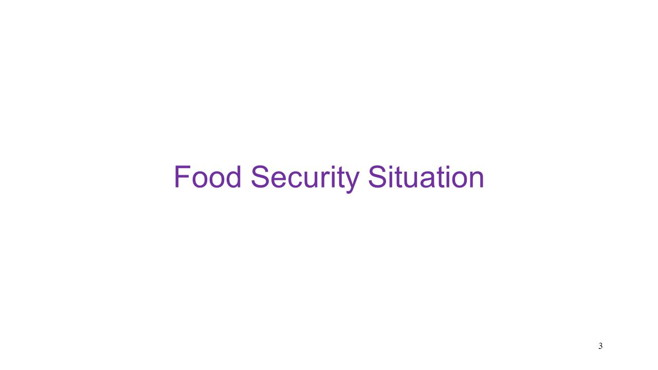 Food Security Situation