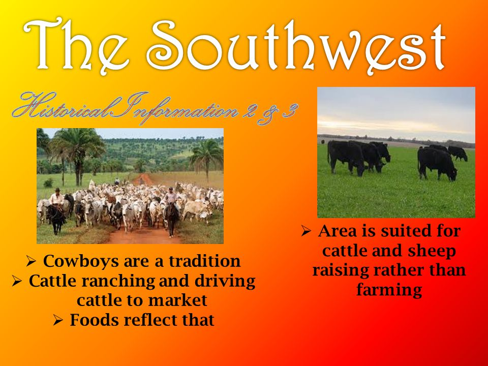 The Southwest Historical Information 2 & 3