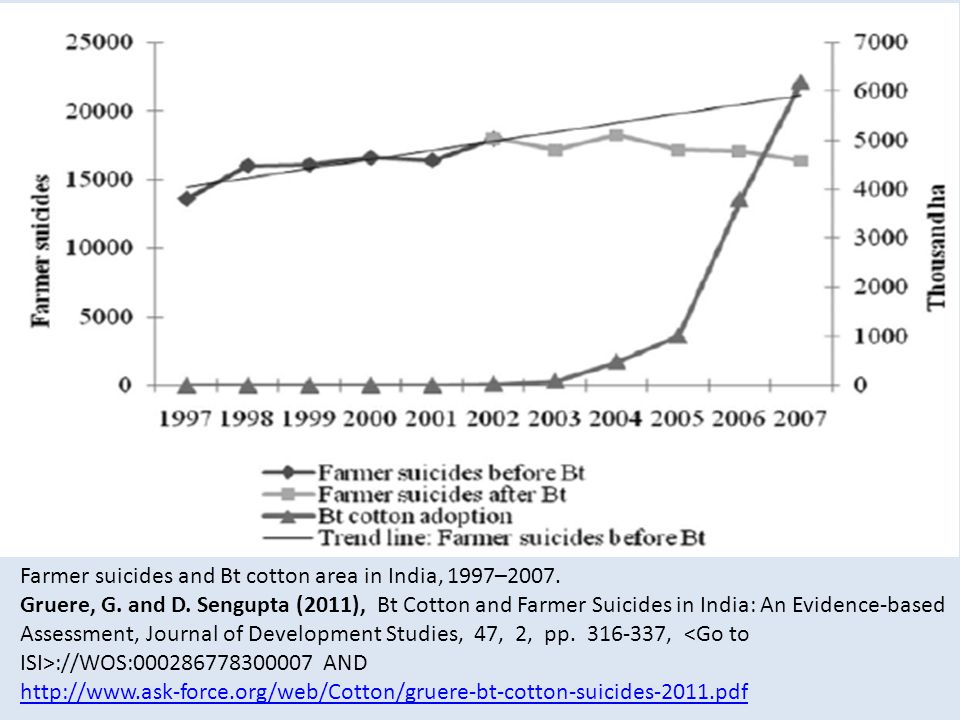Farmer suicides and Bt cotton area in India, 1997–2007.