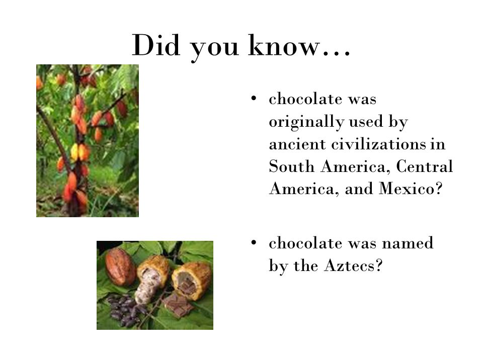 Did you know… chocolate was originally used by ancient civilizations in South America, Central America, and Mexico