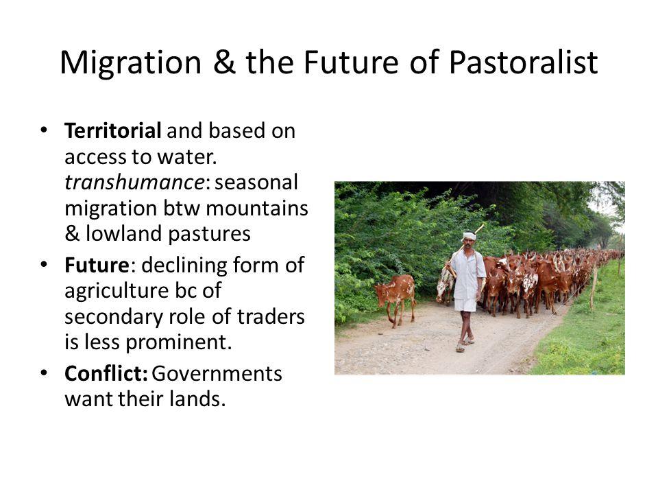 Migration & the Future of Pastoralist