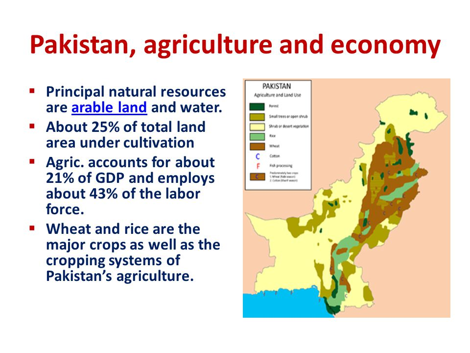 Pakistan, agriculture and economy
