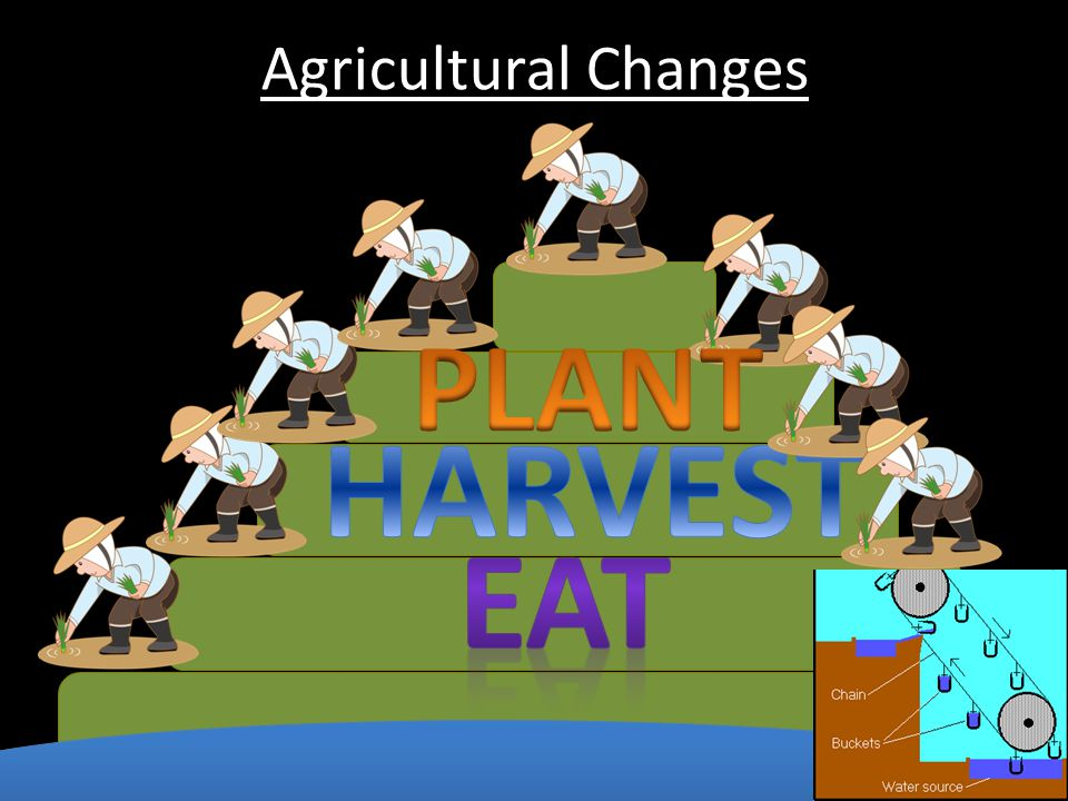 Agricultural Changes PLANT HARVEST EAT