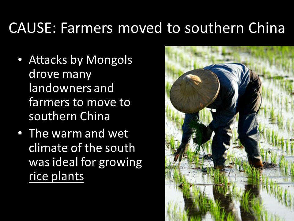 CAUSE: Farmers moved to southern China
