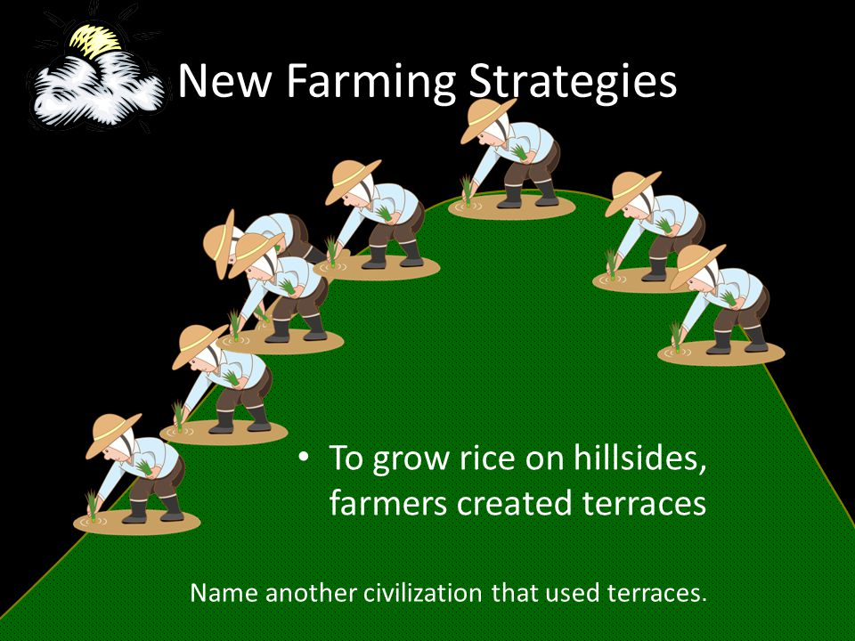 New Farming Strategies