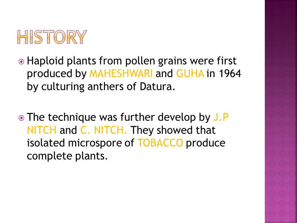 HISTORY Haploid plants from pollen grains were first produced by MAHESHWARI and GUHA in 1964 by culturing anthers of Datura.