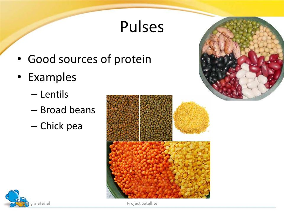 Pulses Good sources of protein Examples Lentils Broad beans Chick pea