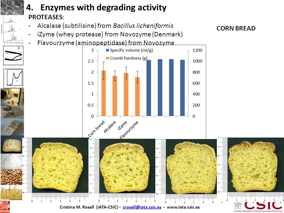 Enzymes with degrading activity