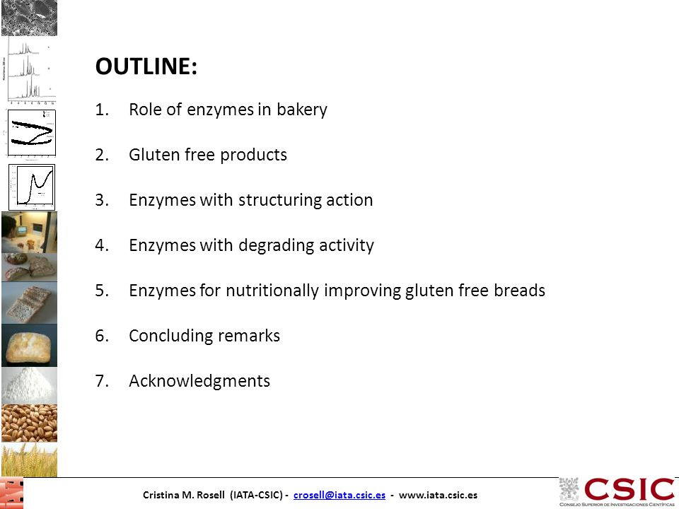OUTLINE: Role of enzymes in bakery Gluten free products