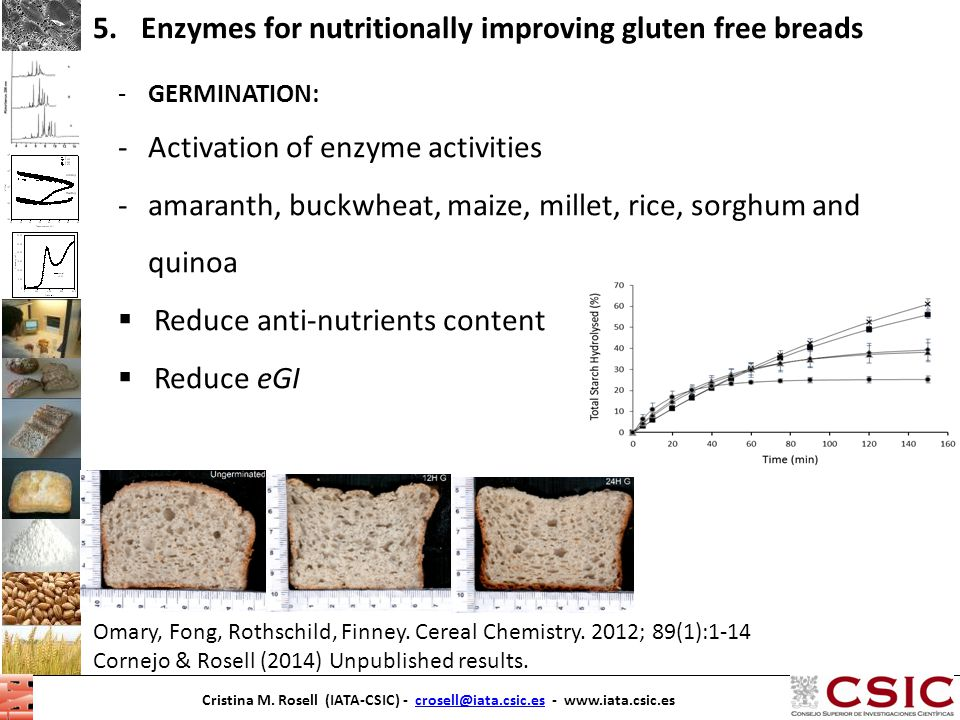Enzymes for nutritionally improving gluten free breads