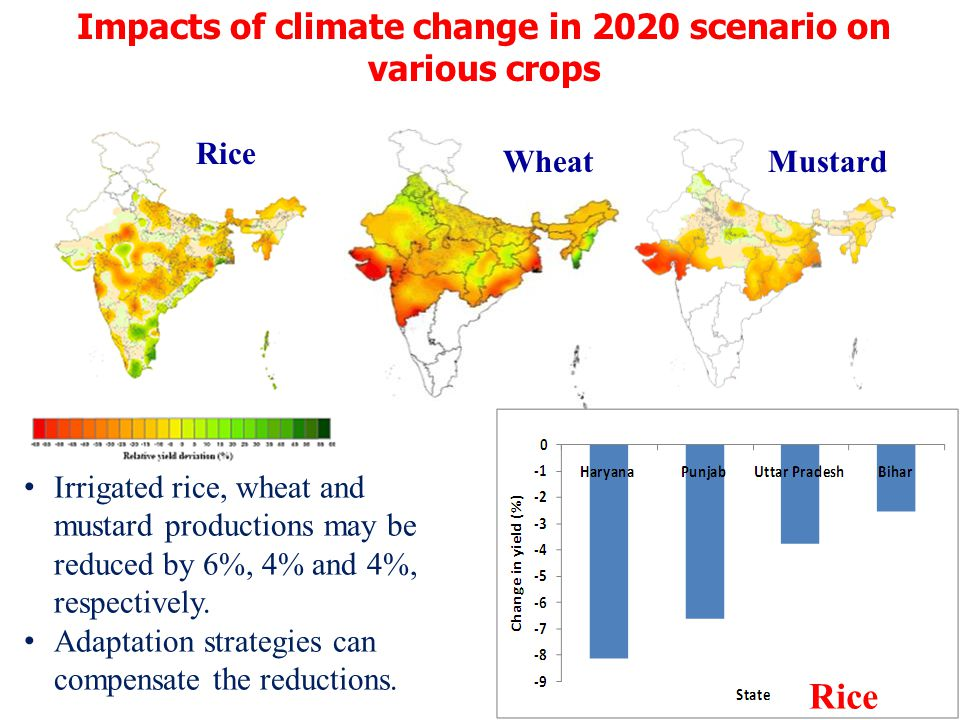 Impacts of climate change in 2020 scenario on various crops