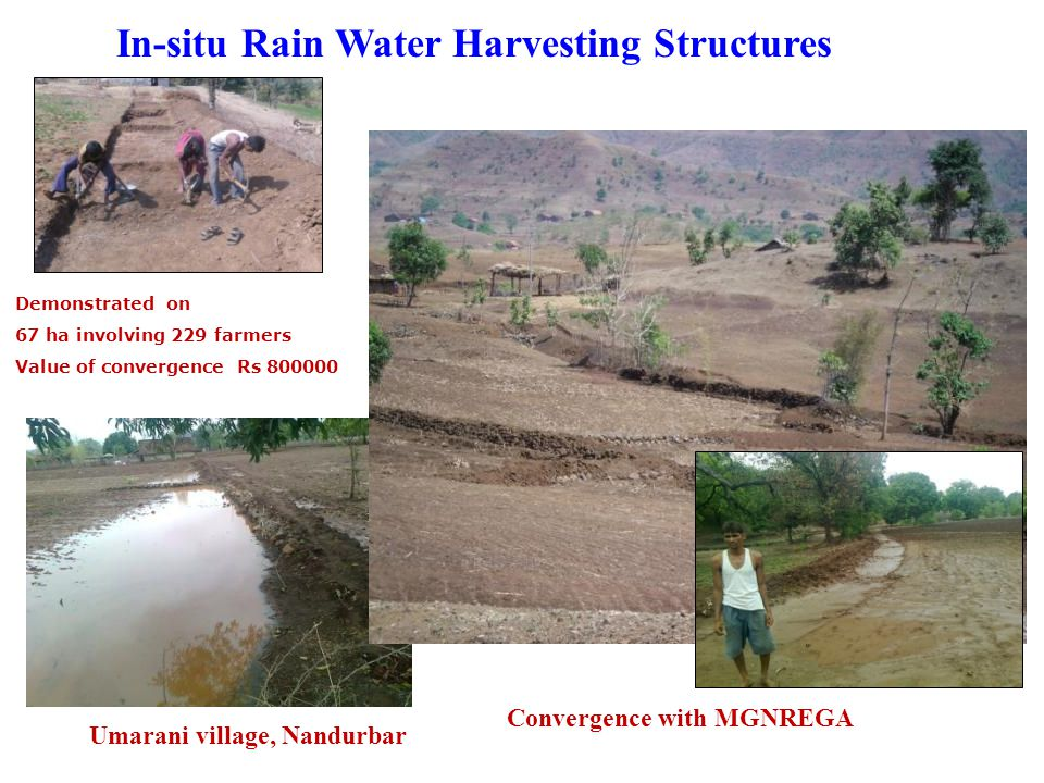 In-situ Rain Water Harvesting Structures