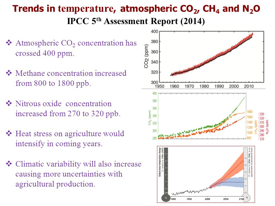 Trends in temperature, atmospheric CO2, CH4 and N2O