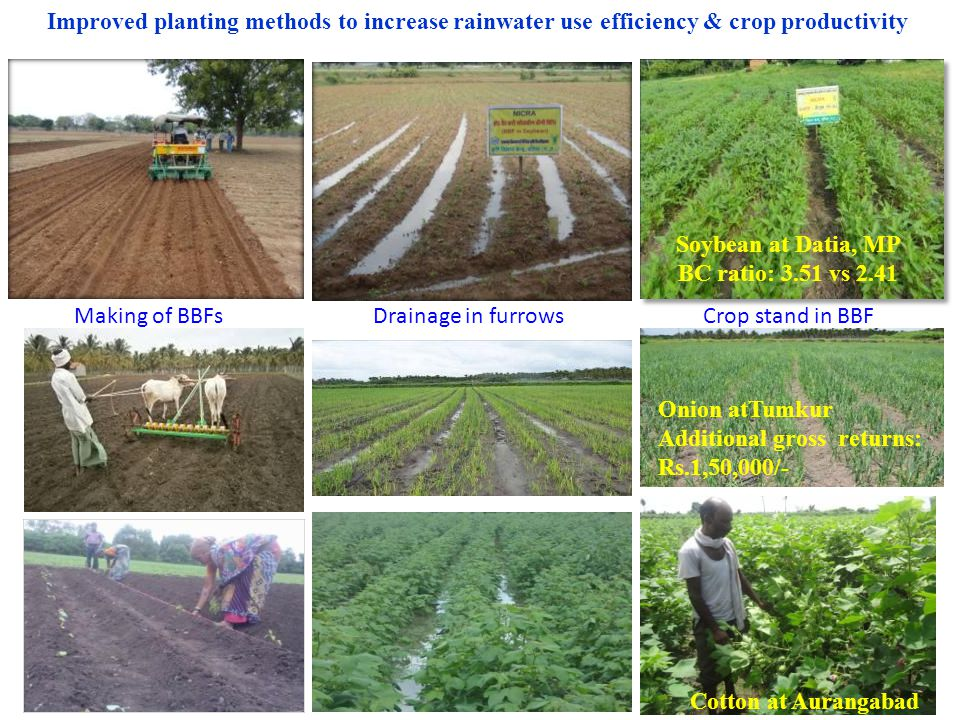 Improved planting methods to increase rainwater use efficiency & crop productivity