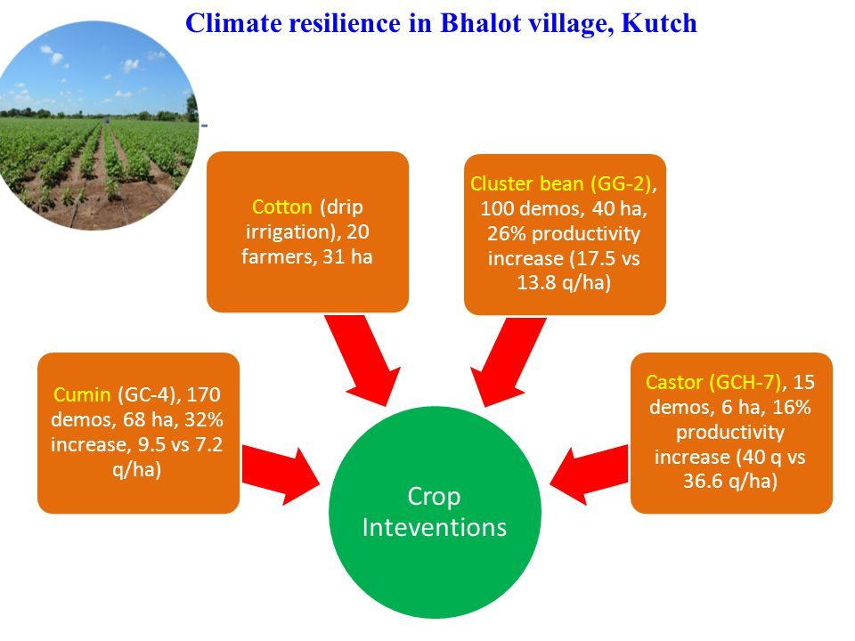 Climate resilience in Bhalot village, Kutch