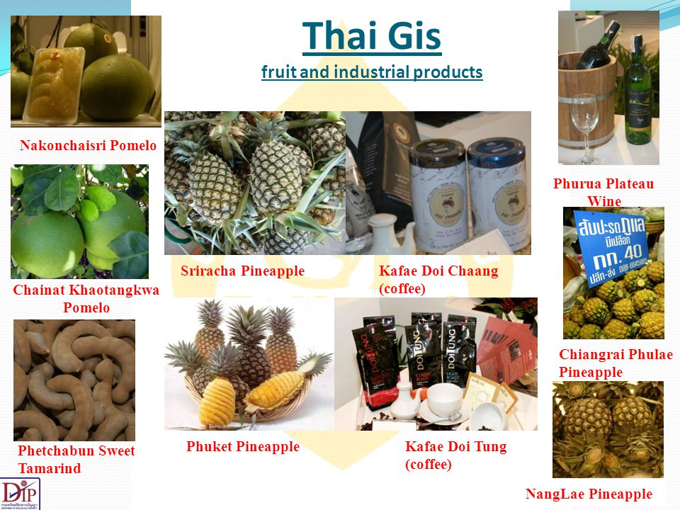 Thai Gis fruit and industrial products