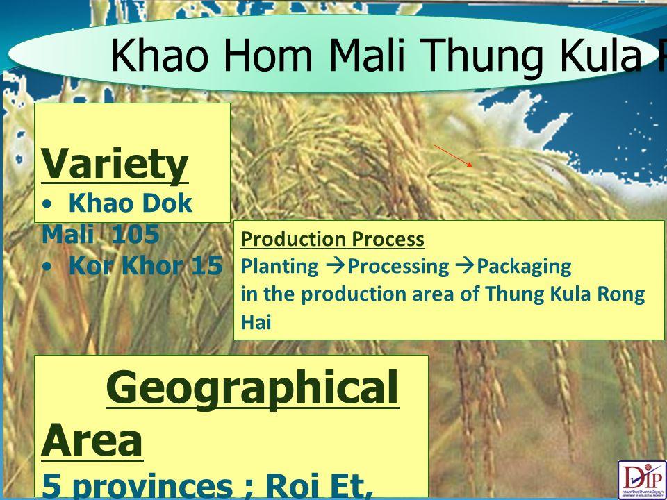 Khao Hom Mali Thung Kula Rong Hai