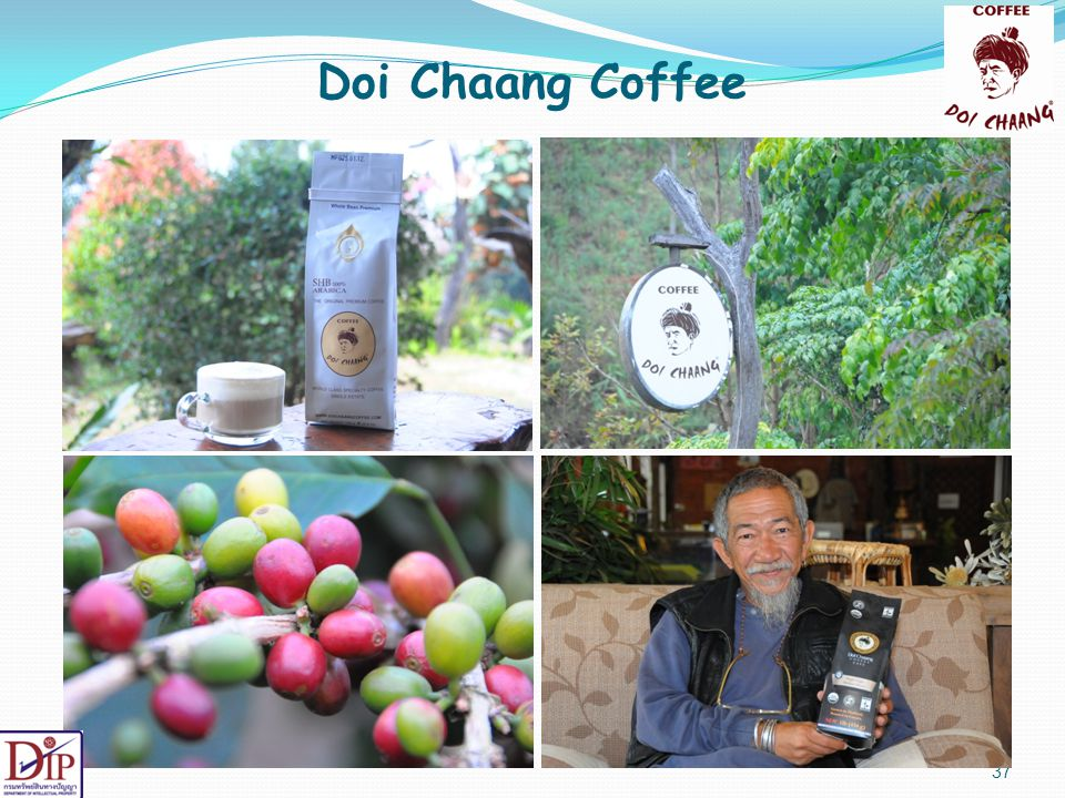 Doi Chaang Coffee Now I would like to go into more details on Doi Chaang Coffee case.