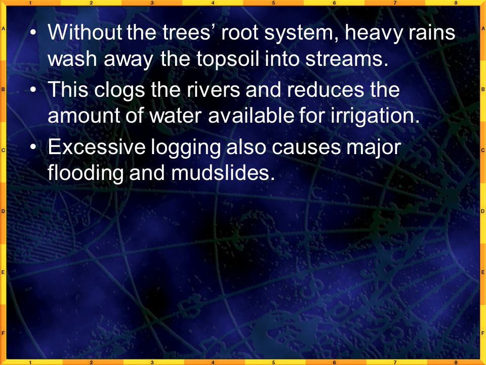 Without the trees' root system, heavy rains wash away the topsoil into streams.