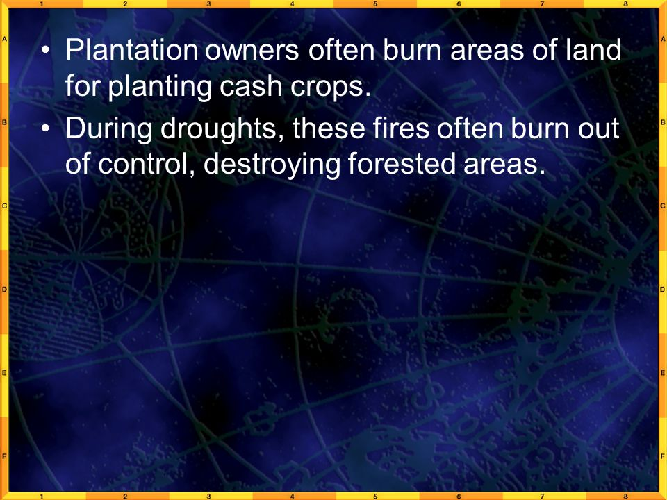 Plantation owners often burn areas of land for planting cash crops.