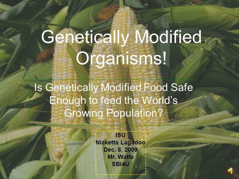 Genetically Modified Organisms!