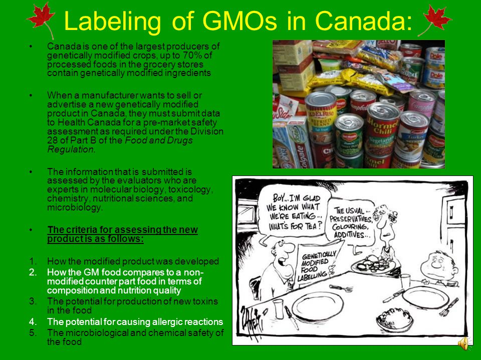 Labeling of GMOs in Canada: