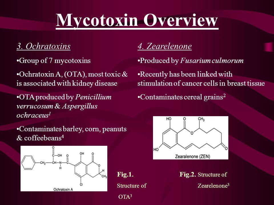 Mycotoxin Overview 3. Ochratoxins 4. Zearelenone Group of 7 mycotoxins